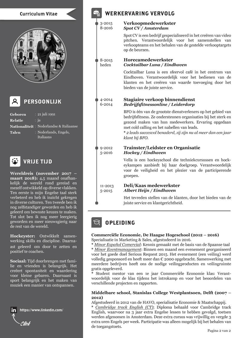 cv curriculum vitae Delft